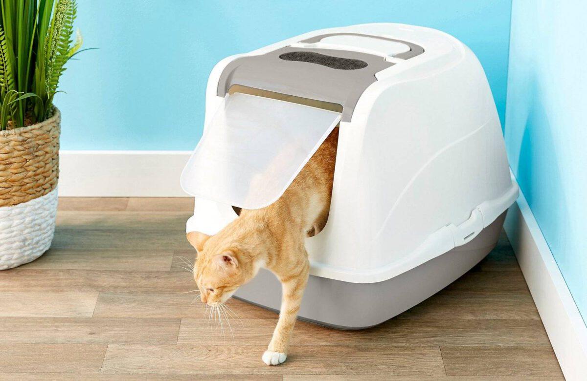 Toalety pro kočky. Jak na ně? Co do nich, jak měnit, jaký typ, kam dát, typy kočkolitu #022