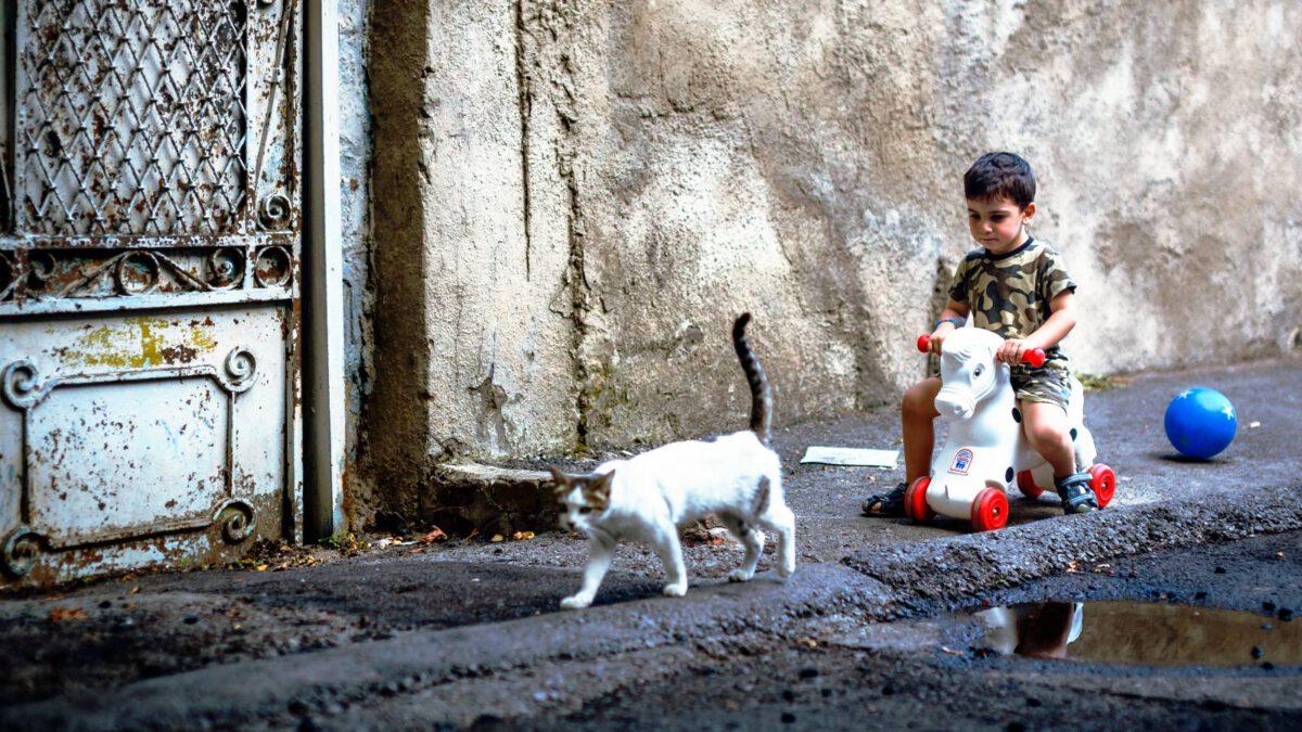 Jak na kočku a malé děti? TIP#097